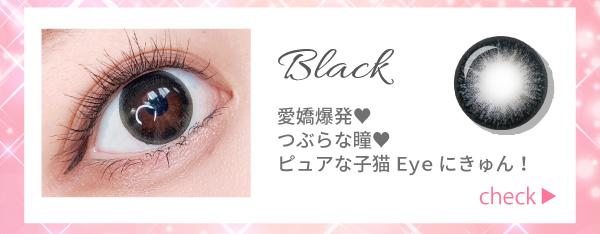 ブラック。愛嬌爆発!つぶらな瞳!ピュアな子猫Eyeにきゅん!チェック