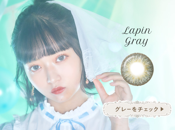 Lapin gray